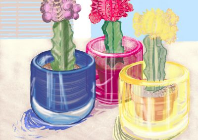 Brushes Gallery — Primary Cacti